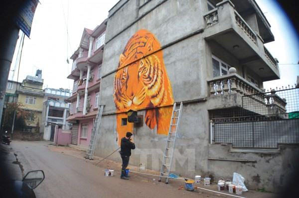 "Dustin Spagnola's ""Kanchanpur"" mural inspired by the Shukla Panta Wildlife Reserve where the tiger population increased from 8 in 2009 to 17 in 2013Kolor Kathmandu project, 25 feet high, 2013"